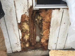 best dry rot repair siding contractors Vancouver Clark County